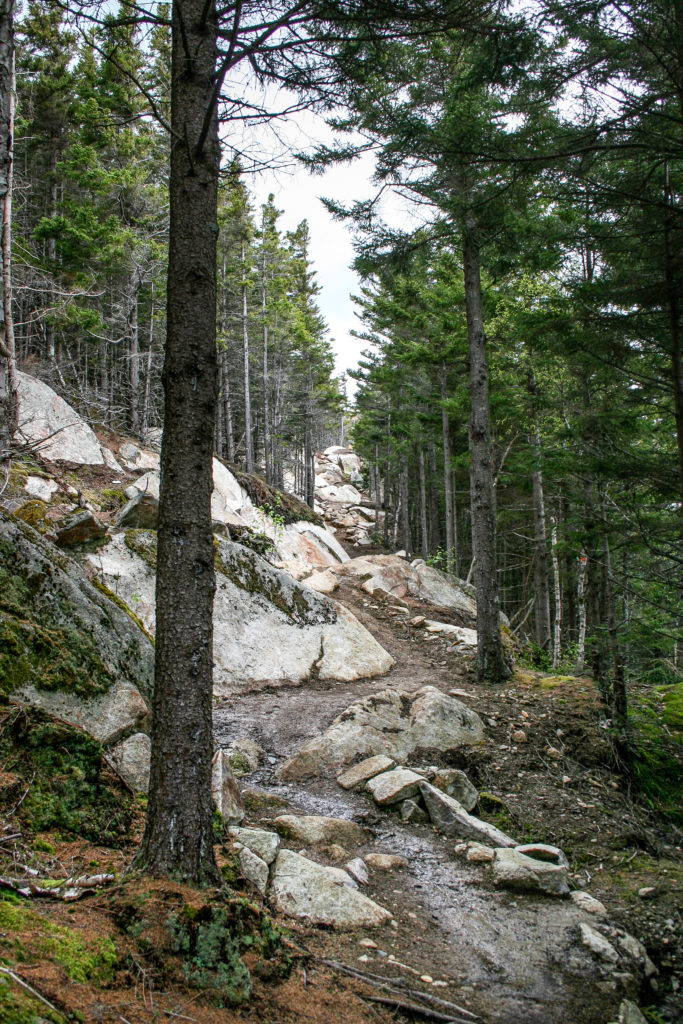 Trail winding through the rocks.  Sentier des Escarpments   Mont Megantic
