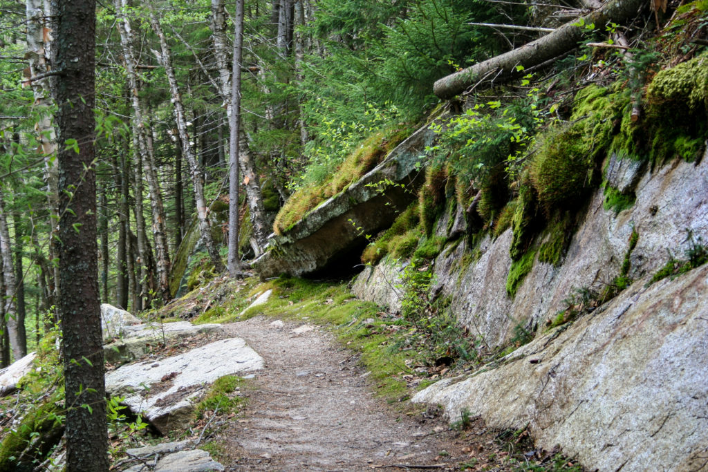 A trail along the mossy rock face.  Sentier des Escarpments   Mont Megantic
